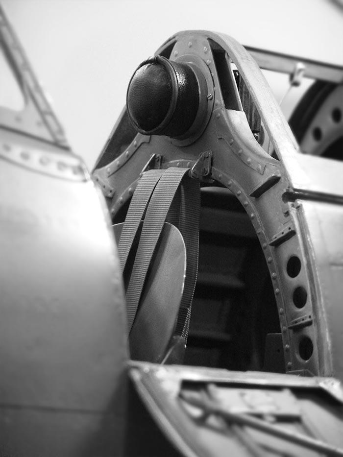 Scale Cockpit Auftragsarbeit